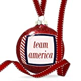Christmas Decoration Team America Fourth of July Red Stripes Ornament