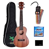 CAHAYA Concert Ukulele 23 inch with Oxford Bag Rainbow Strap and Nylon String for Beginners and Professionals