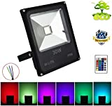 30W RGB LED Flood Lights, Dimmable Wall Washer Light, Colour Changing Security Light, 16 Colours 4 Modes, Waterproof LED Remote Control Floodlight, No Plug[Energy Class A+]