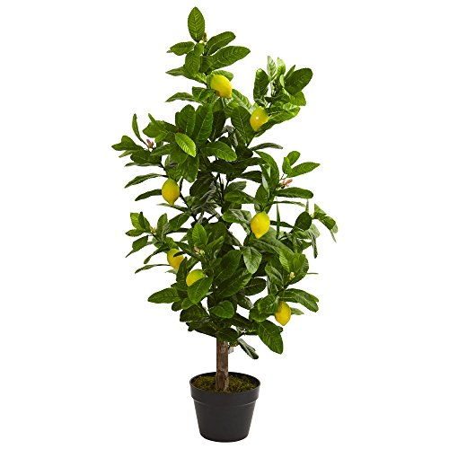 Nearly Natural 5581 3' Lemon Artificial Plant, Green ()