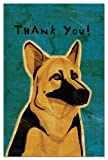 Tree-Free Greetings Eco-Notes Thank You Card Set, 4 x 6 Inches, 12-count Cards with Envelopes, German Shepherd (94579)