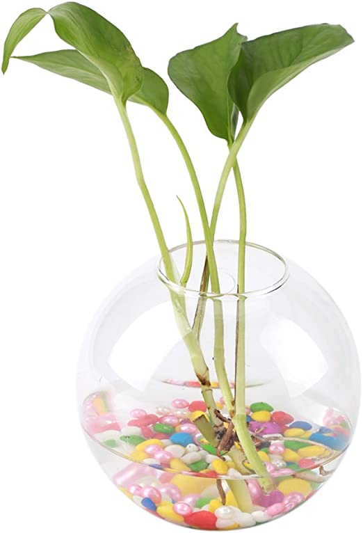 Clear Taper Glass Hanging Vase Flowers Plant Hydroponics Bottle Container Pot