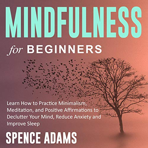 Pdf Fitness Mindfulness for Beginners: Learn How to Practice Minimalism, Meditation, and Positive Affirmations to Declutter Your Mind, Reduce Anxiety and Improve Sleep