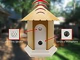 MATOP Outdoor Ultrasonic Dog Anti-Bark Control Training Birdhouse Box Bark Controller Device Sonic Bark Deterrents, Battery Operated (Yellow)