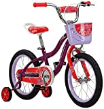 Schwinn Elm Girl's Bike, Featuring SmartStart Frame to Fit Your Child's Proportions, 16inches Wheels, Purple (Renewed)