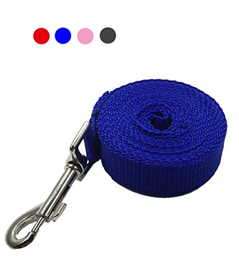 Blue Dog Flexible Leash - 5