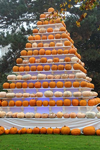 Home Comforts Peel-n-Stick Poster of Deco Pumpkin Pyramid Autumn Halloween Europa Park Vivid Imagery Poster 24 x 16 Adhesive Sticker Poster Print]()