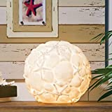 "CC Home Furnishings 13"" Coastal Delights White Embossed Nautical Seashell Orb Table Lamp"