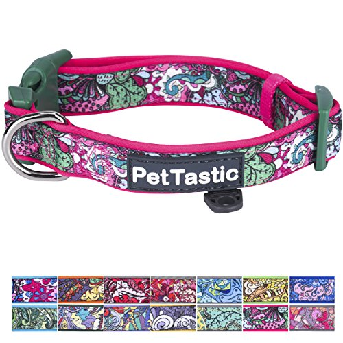 Best Adjustable Small Dog Collar - PetTastic Durable Soft & Heavy Duty with Cute Creative Colored Design, Outdoor & Indoor use Comfort Dog Collar for girls, boys, puppy, adults, including ID Tag Ring (Tag Puppy Dog)