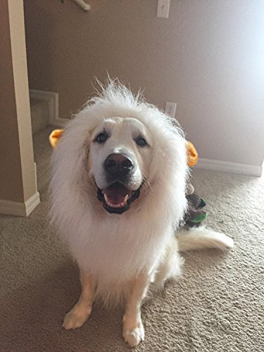 SPORER Lion Mane for Dog Pet Costume - FMJI Dog Clothes Lion Wig for Halloween Festival Party