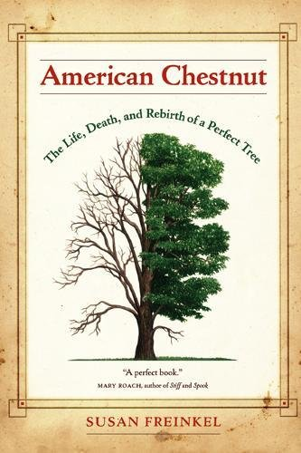 American Chestnut: The Life, Death, and Rebirth of a Perfect Tree