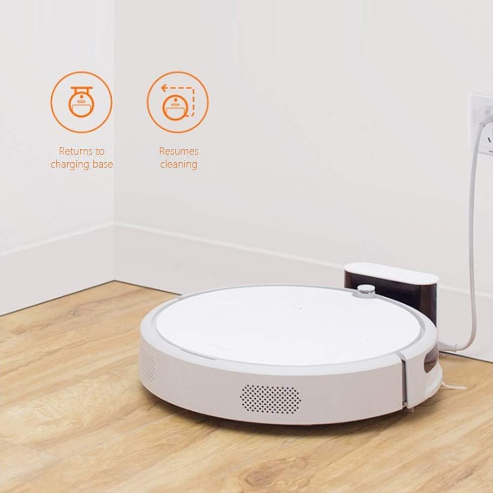 Amazon.com - Roborock Xiaowa E20 Smart Planned Robot Vacuum Cleaner ...
