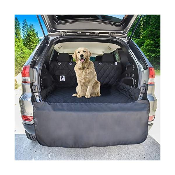 Accessory Dog