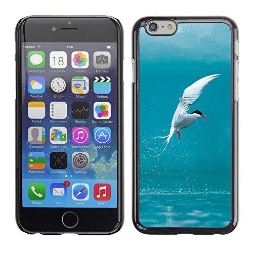 "Premio Sottile Slim Cassa Custodia Case Cover Shell // V00002969 oiseau // Apple iPhone 6 6S 6G 4.7"""