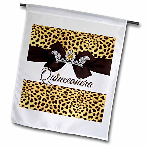 Doreen Erhardt Birthday Collection - Quinceanera Cheetah ...