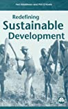 Redefining Sustainable Development 9780745316055