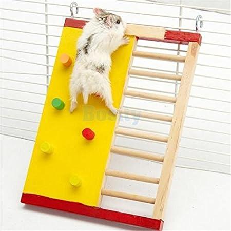 Hámster Creciente trazo Escalera madera natural Rata Ratón Pedal de Spa § de juguete Segura ungiftiges: Amazon.es: Productos para mascotas
