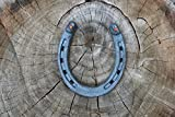 Talismans Good Luck Horseshoe with Two Nails