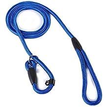 Salesland Pet Dog Whisperer Cesar Slip Training Leash Lead Collar