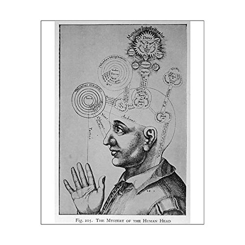 10X8 Print Of Paranormal/phrenology (578009) by Mary Evans Prints Online
