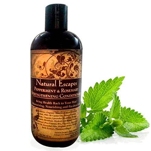 Peppermint & Rosemary Conditioner | Natural Conditioner for Hair Loss, Dry Hair, Color Treated Hair, Hair Growth & More! | Paraben & Sulfate Free Conditioner | 16 oz