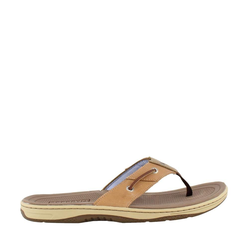 Sperry Top-Sider Men's Baitfish Thong,Dark Tan Leather,US 14 M
