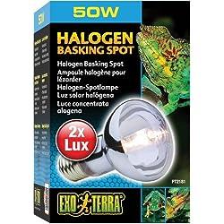 Exo Terra Sun-Glo Daylight Halogen Lamp, 50-Watt