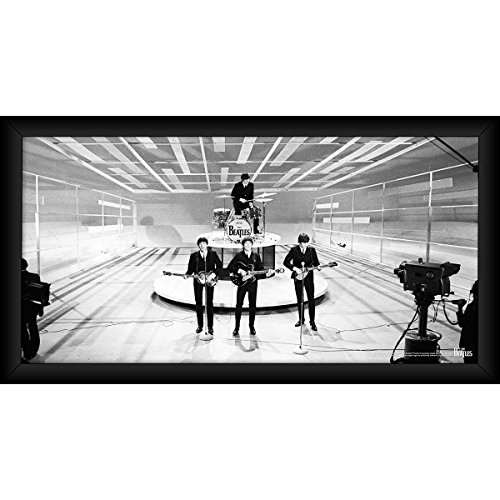 (Steiner Sports The Beatles On Stage Black and White 10 inch x 20 inch Framed Photo)