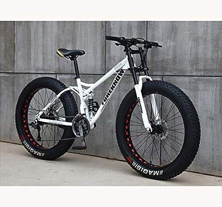 GASLIKE Fat Tire Mountain Bike para Adolescentes de Hombres y Mujeres Adultos, Marco de Acero de Alto Carbono, suspensión Doble de Cola Suave, Freno de Disco mecánico