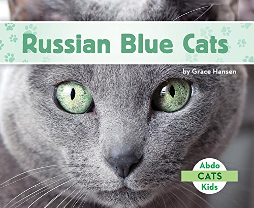 Russian Blue Cats (Abdo Kids Cats) by Abdo Kids (Image #1)