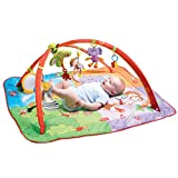 Tiny Love 00836-003  Move and Play Gymini with Adjustable Arches