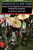 Guadalupe in New York, Alyshia Galvez, 0814732143