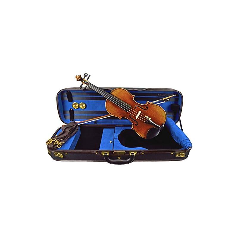 Mikhail Vitacek Violin Outfit