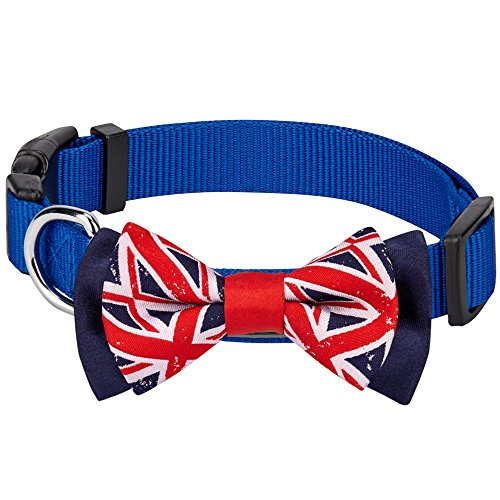 (Blueberry Pet National Pride UK Flag Bowtie Blue Dog Collar - Handmade UK Bow Tie w/Jacquard Weave Fabric, Small, Neck 12