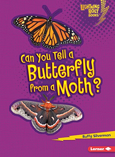 Can You Tell a Butterfly from a Moth? (Lightning Bolt Books ® _ Animal Look-Alikes) (Caterpillar Antennae)