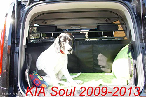 Dog Guard, Pet Barrier Net and Screen RDA65HBG-L for KIA Soul, car model produced from 2009 to 2013, for Luggage and Pets