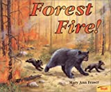 Forest Fire!, Mary Ann Fraser, 0816749620