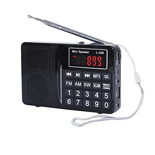 Easycare Portable Mini AM FM Radio Clear Speaker Music Player (L-258, Black) by EasyCare