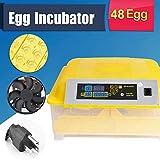 OppsDecor Egg Incubator, 48 Eggs Digital