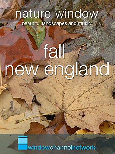 Fall New England, Nature Window (Michaels Ribbon Fall)