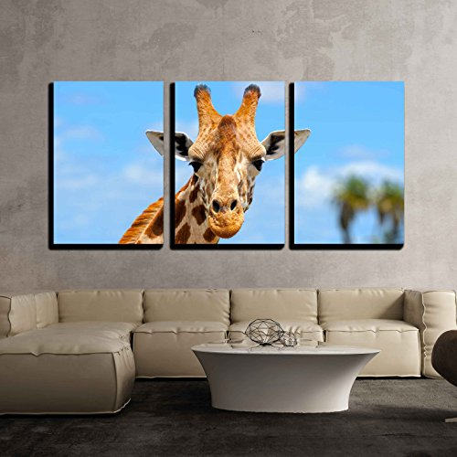 - wall26 - 3 Piece Canvas Wall Art - Giraffe in Front Amboseli National Park Kenya - Modern Home Decor Stretched and Framed Ready to Hang - 16