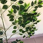 ZJJFZH-Artificial-Decorative-Flowers-Simulation-Plant-Mimosa-Persian-Grass-Fern-Grass-Persian-Fern-Plant-Wall-with-Decorative-Features-Flower-Products-IncludeDecorative-Artificial-Flowers