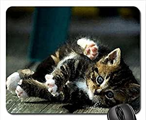 Flexible kitty Mouse Pad, Mousepad (Cats Mouse Pad, 10.2 x 8.3 x 0.12 inches)