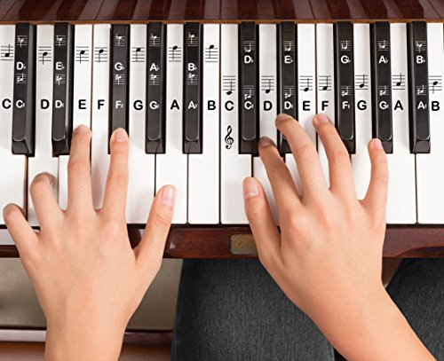 graphic about Piano Key Stickers Printable referred to as Piano Stickers for all Keys - Resilient Double Layer Lined