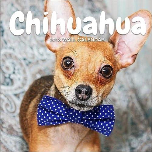 Chihuahua 2018 Wall Calendar: Chihuahua Photography, 8.5 x 8.5, Mini Calendar, Wall Calendar (Cute Calendar) (Animal Calendars)