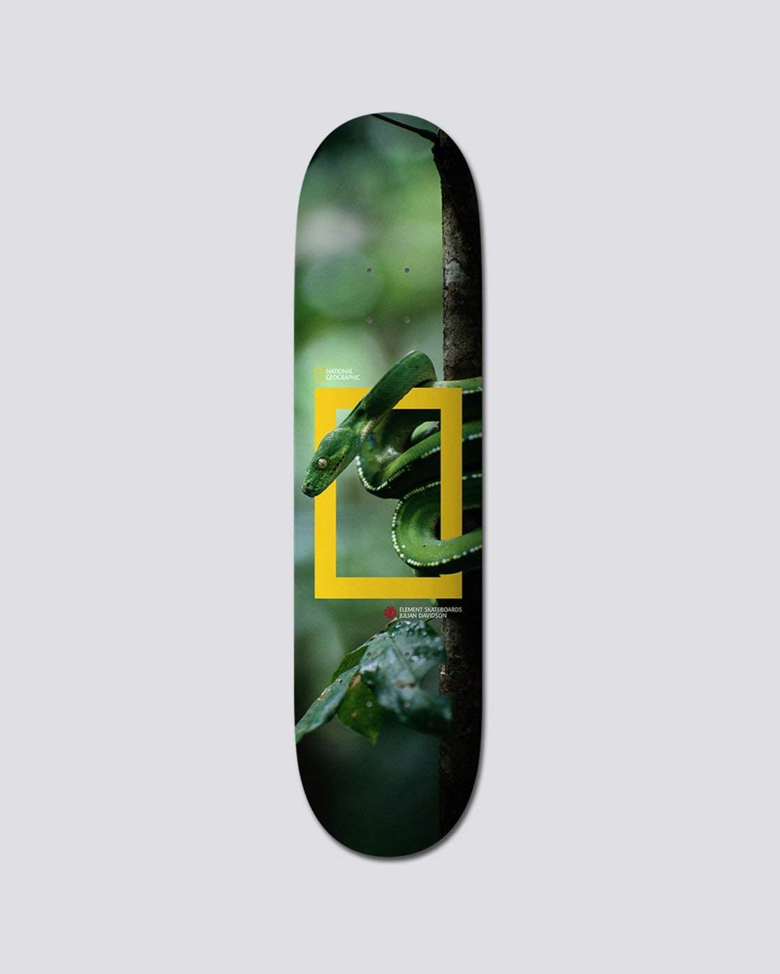 Element Davidson Nat Geo Snake 8.25 Deck kaufen