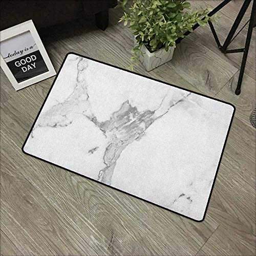 (Printed Door mat W16 x L24 INCH Marble,Abstract Stained Hazy Pattern Natural Textured Architectural Background Theme, Grey White Dust Easy to Clean, no Deformation, no Fading Non-Slip Door Mat Carpet)