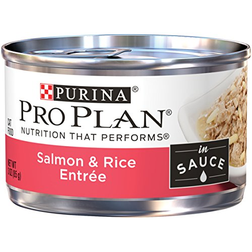 Purina Pro Plan Wet Cat Food, Savor, Adult Salmon and Rice Entree, 3-Ounce Can, Pack of 24