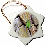 3dRose TDSwhite – Rock Photos - Rock Formation - 3 inch Snowflake Porcelain Ornament (orn_281915_1)