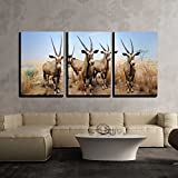 wall26 - 3 Piece Canvas Wall Art - the American Museum of Natural History in Manhattan, New York City. - Modern Home Decor Stretched and Framed Ready to Hang - 24''x36''x3 Panels